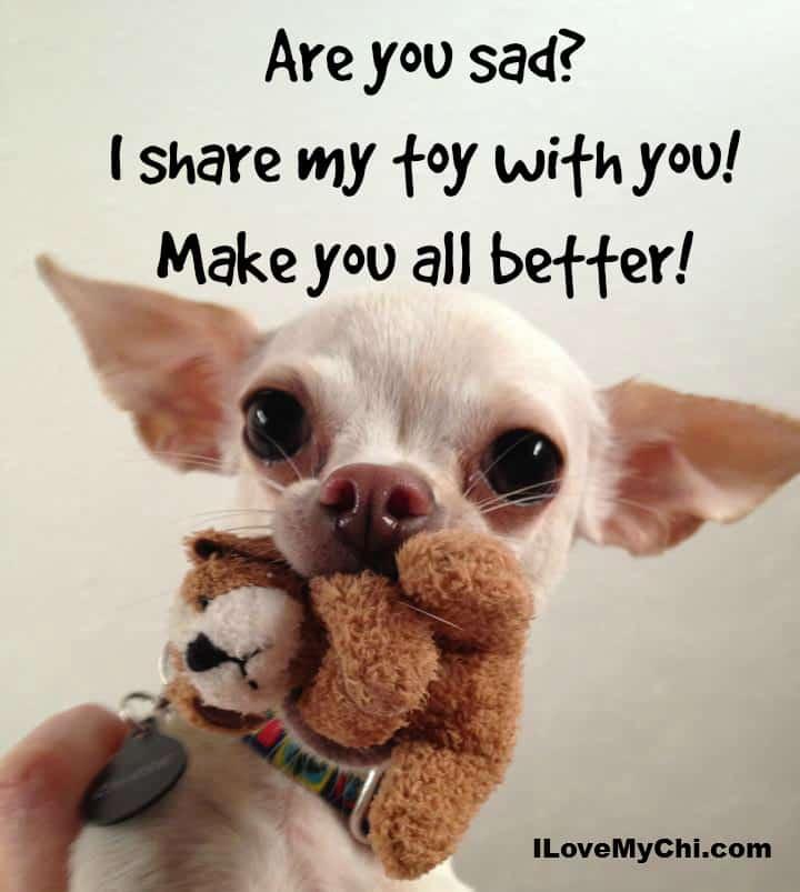 Are you sad?