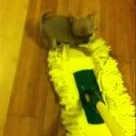 Little Mop Attacker