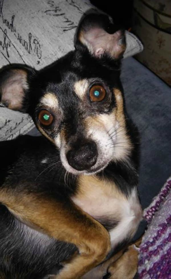 Omar the Chi mix