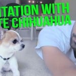 Pancho and Nic Try to Meditate