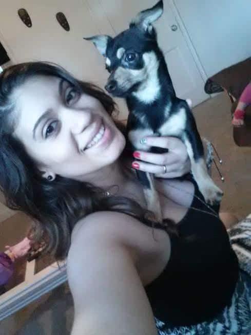 Capponi the Chihuahua