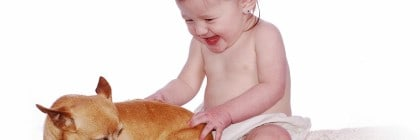 baby and Chihuahuafeatured