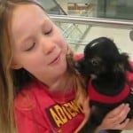 Puppy Surprise for Little Girl