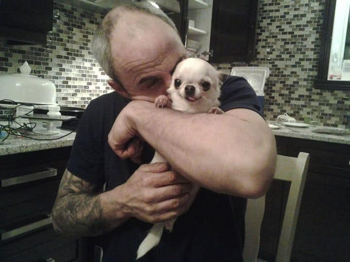 Chihuahua and dad