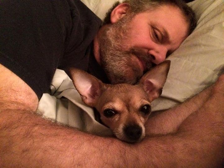 Chihuahua and father