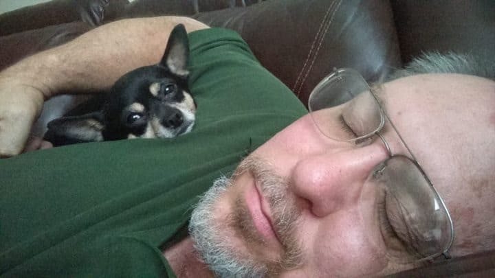 Mickey the Chihuahua and dad