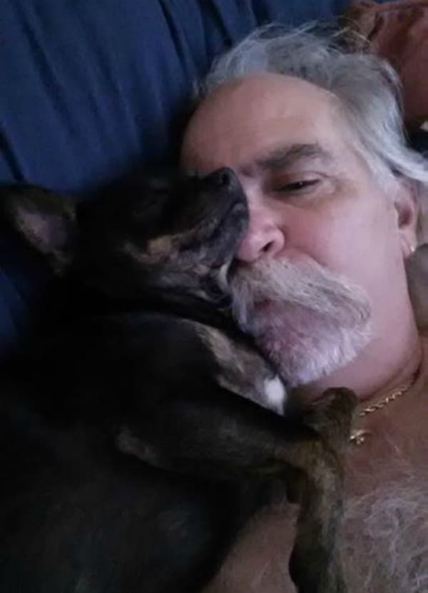 Cheech the Chihuahua and his dad