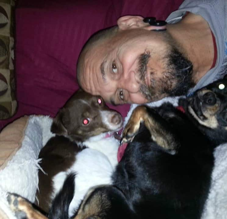 dad with 2 Chihuahuas
