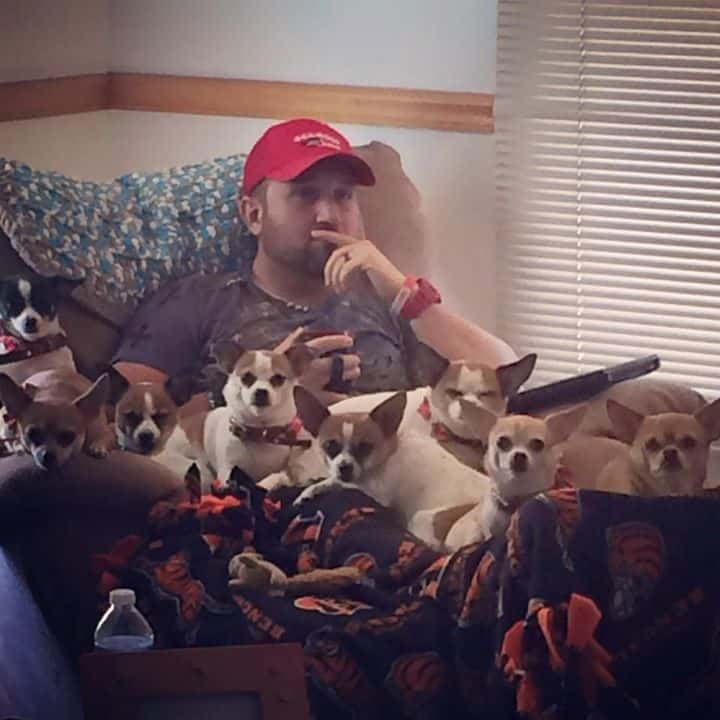 8 Chihuahuas and their father