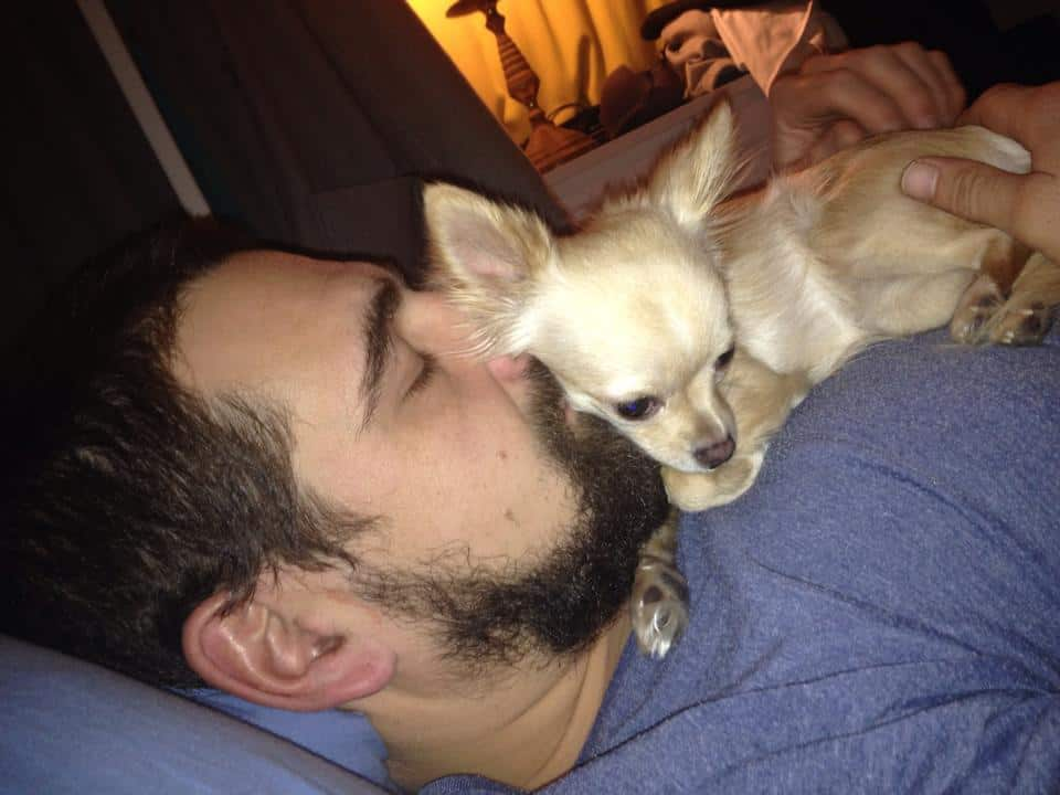 Chihuahua and her daddy