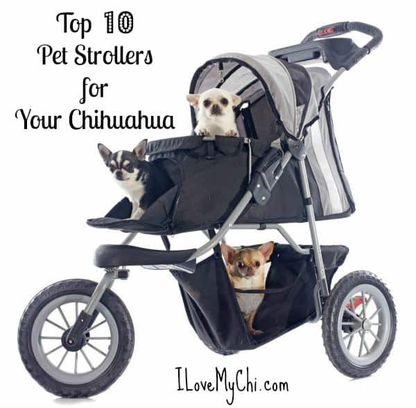 Cat Prams Australia