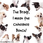 The Brady Bunch?