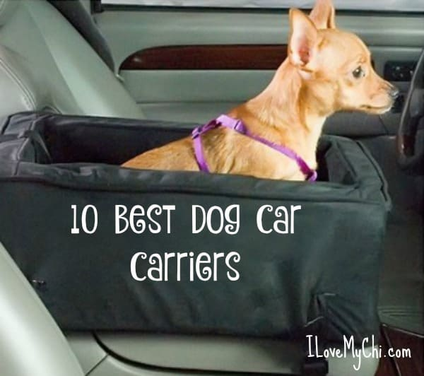 10 Best Dog Car Carriers