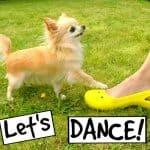 Cedric Tries to Dance