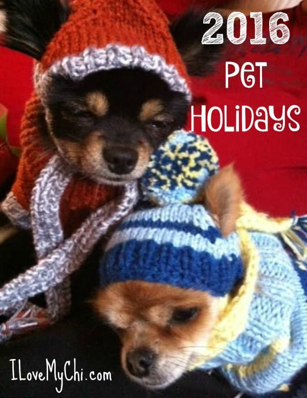 2016 Pet Holidays