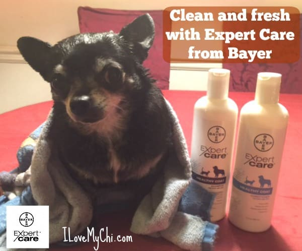 Shampoo and Conditioner from Bayer
