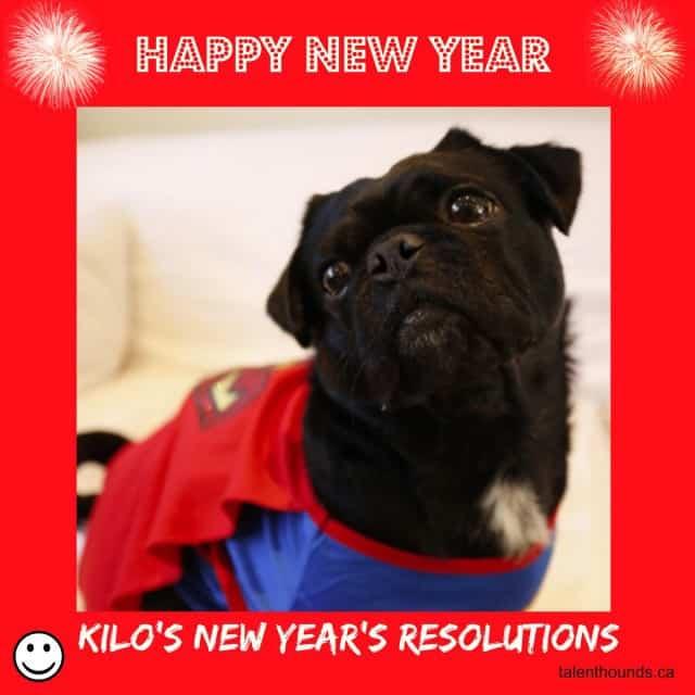 Happy-New-Year-from-Kilo-640x640
