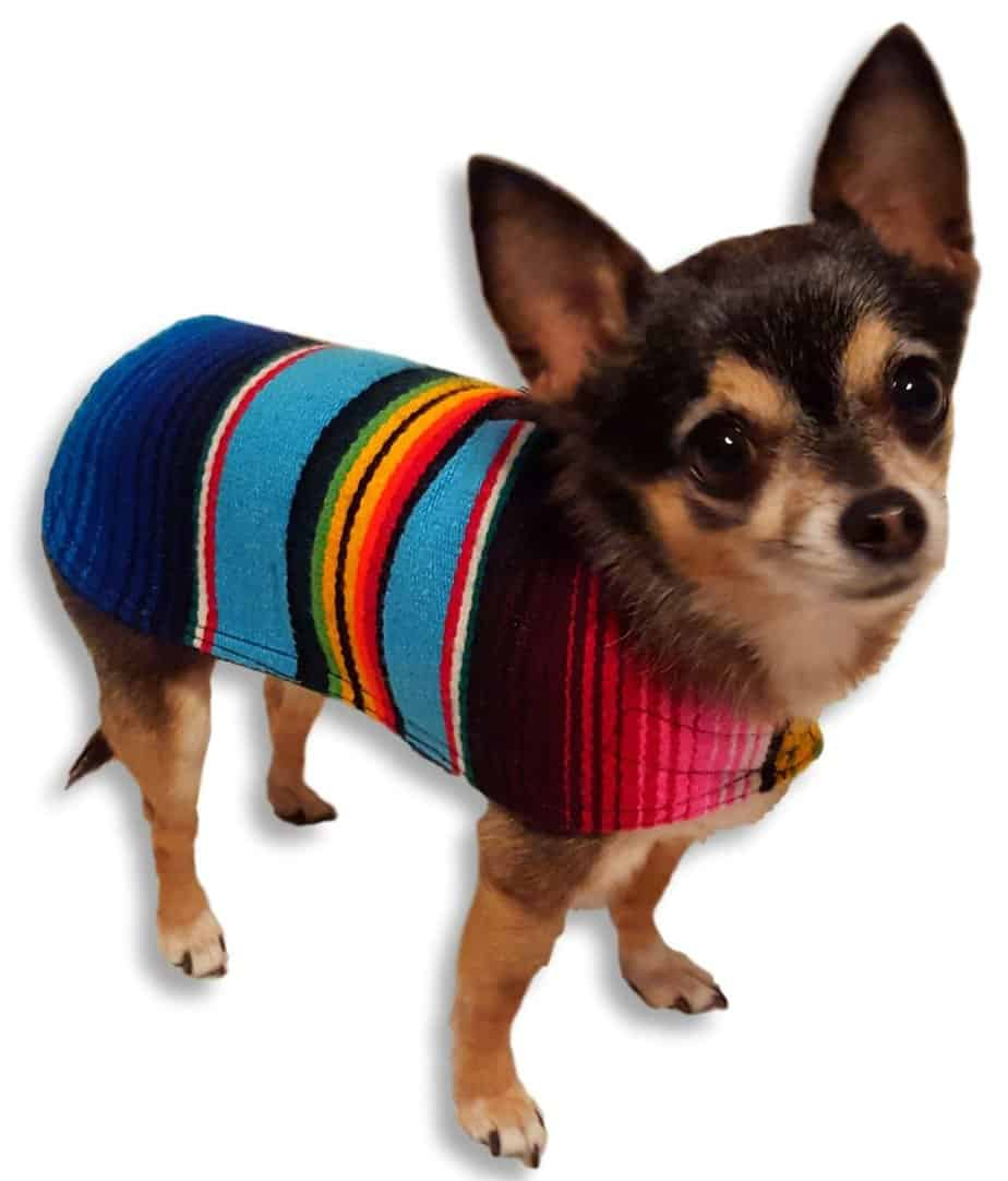 Dog Clothes - Handmade Dog Poncho from Authentic Mexican Blanket by Baja Ponchos