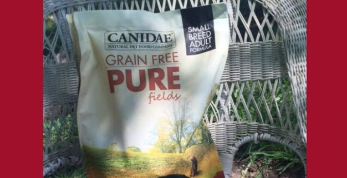 Go Grain Free with CANIDAE® #HealthyPetHappyPet