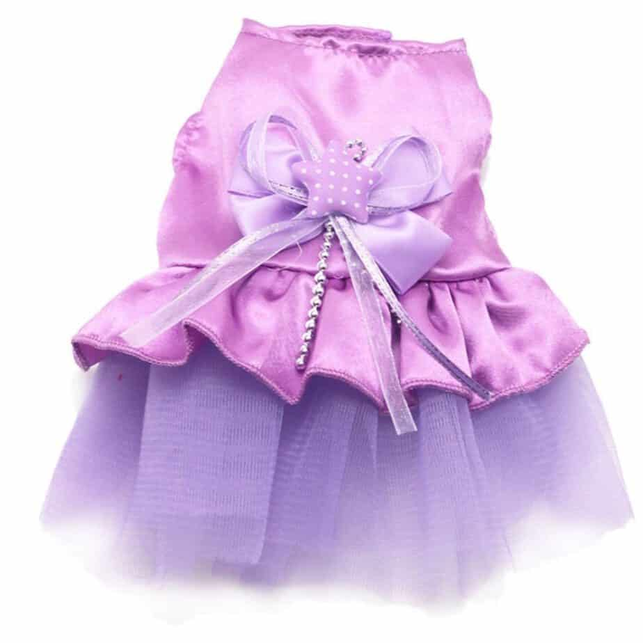 Tutu Dress Lace Skirt