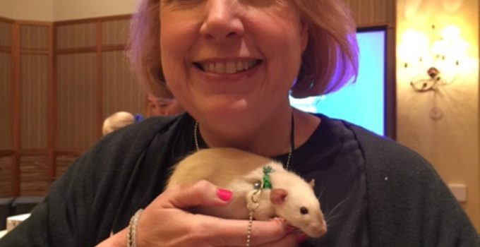 My First Ever Pet Bloggers Conference