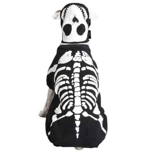 bones costume for dogs