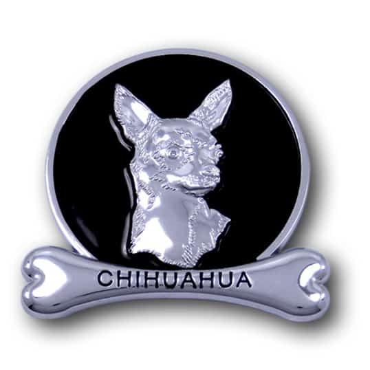 chihuahua chrome animals