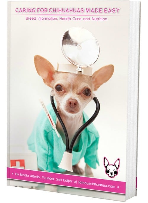 Famous Chihuahua Book