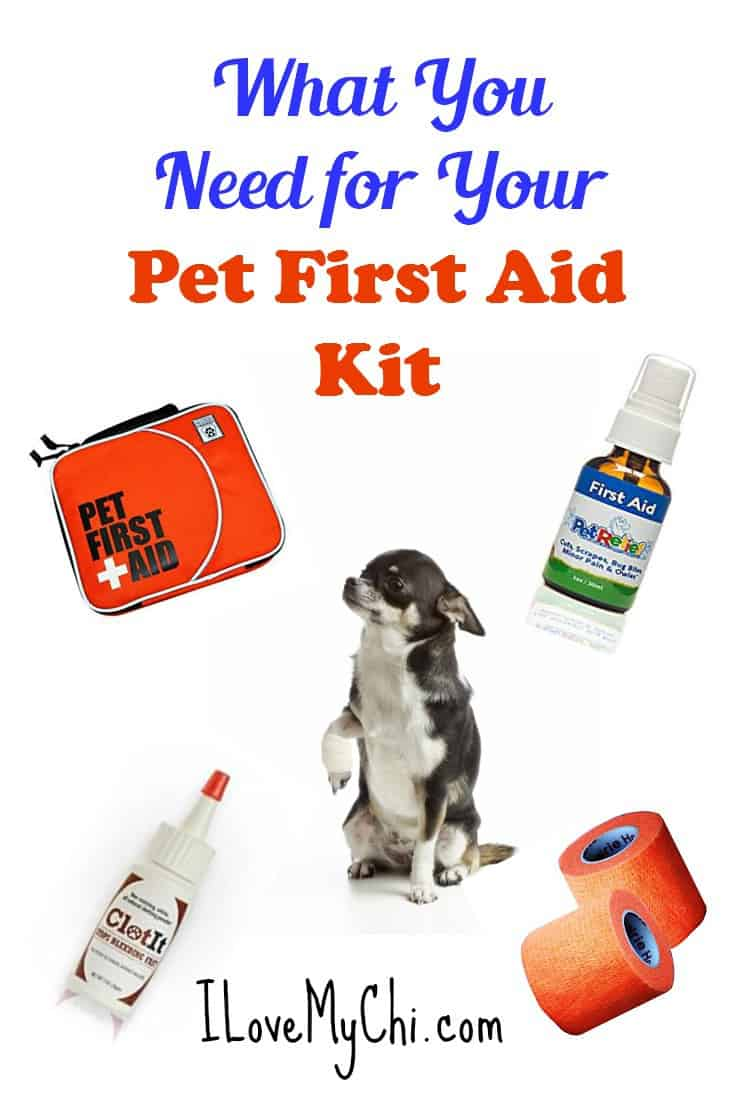 Are you prepared to help your pet if they get sick or hurt? Having a first aid kit for your pet is something all pet owners should have in their home.