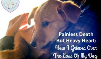 Painless Death But Heavy Heart: How I Grieved Over The Loss Of My Dog