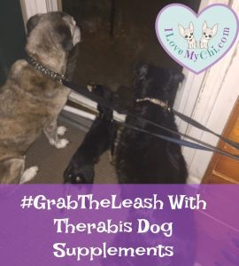 #GrabTheLeash With Therabis Dog Supplements