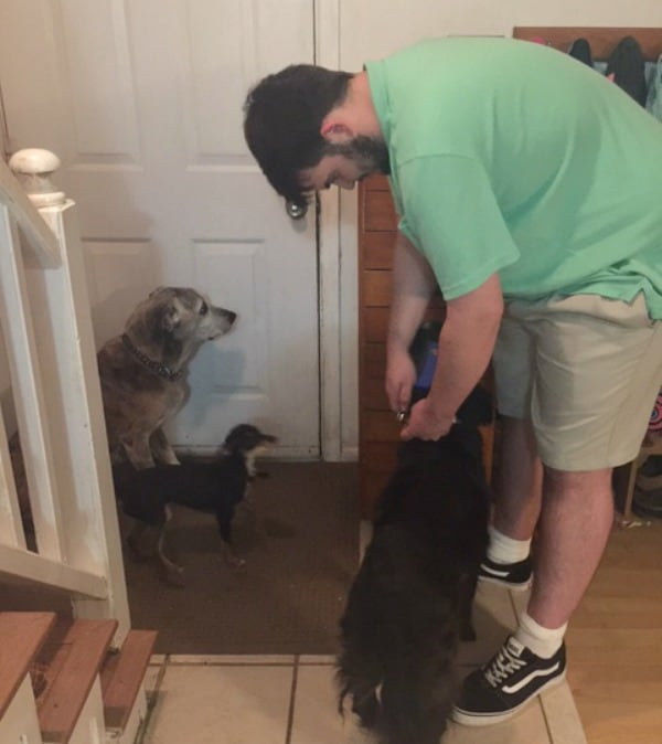 Ryan getting the dogs ready for their walk