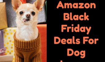 TOP 12 Amazon Black Friday Deals For Dog Lovers