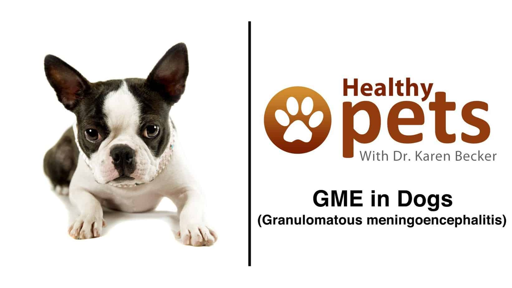 GME: A Deadly Condition You Probably Never Heard Of