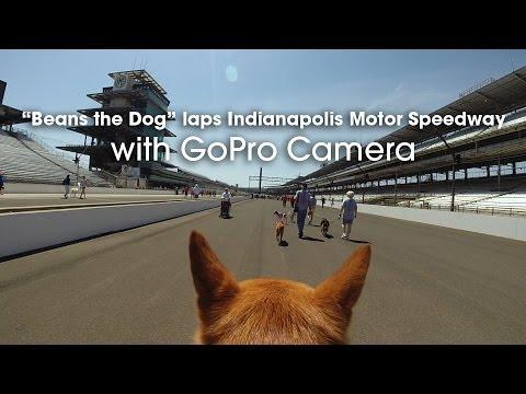 Walking the Indy 500 Through Beans Eyes