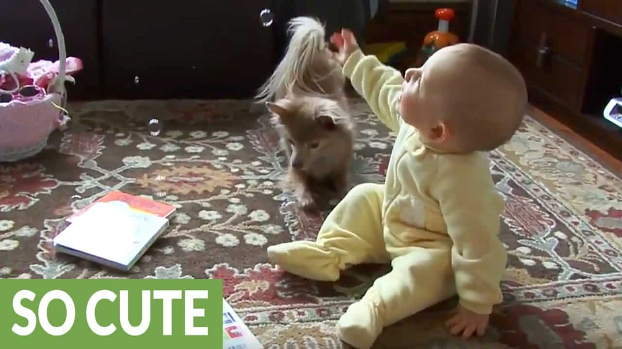 Baby and Chi Bubble Time