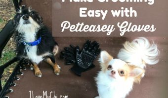 Petteasey Grooming Gloves