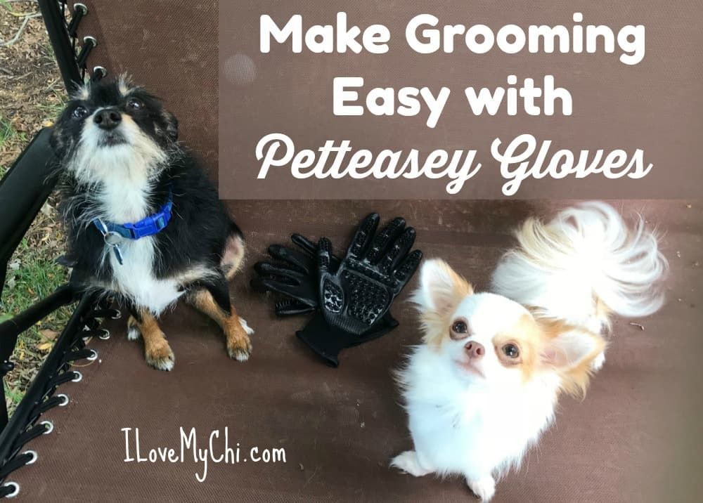Make Grooming Easy with Petteasey Gloves