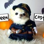 Cedric Gets Ready for Halloween