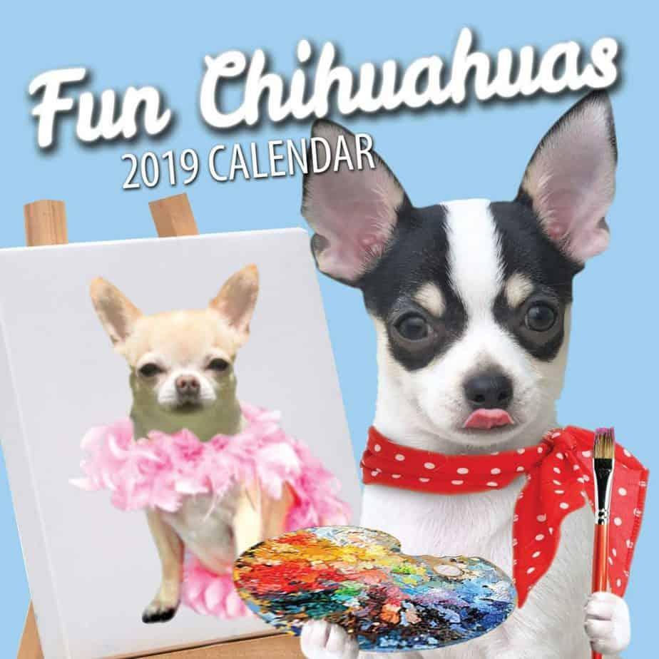 Fun Chihuahuas 2019 Chihuahua Wall Calendar