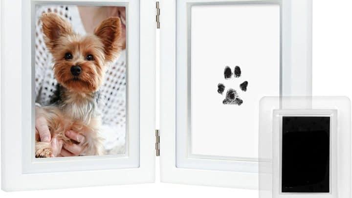 memorial dog frame