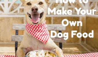 what you need to know to make dog food