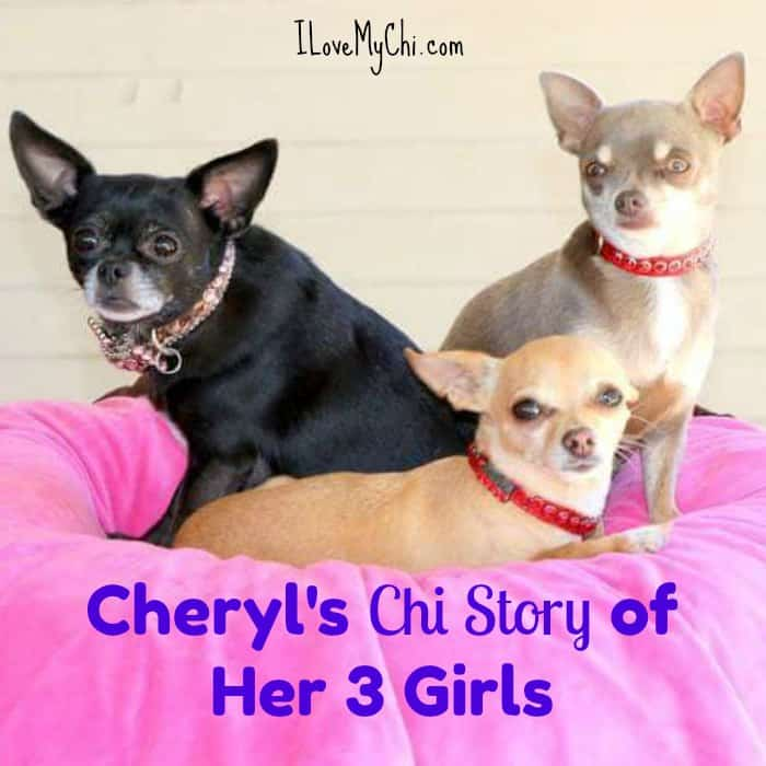 Cheryl's Chi Story of Her 3 Girls