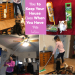 How to Keep Your House Clean When You Have Pets
