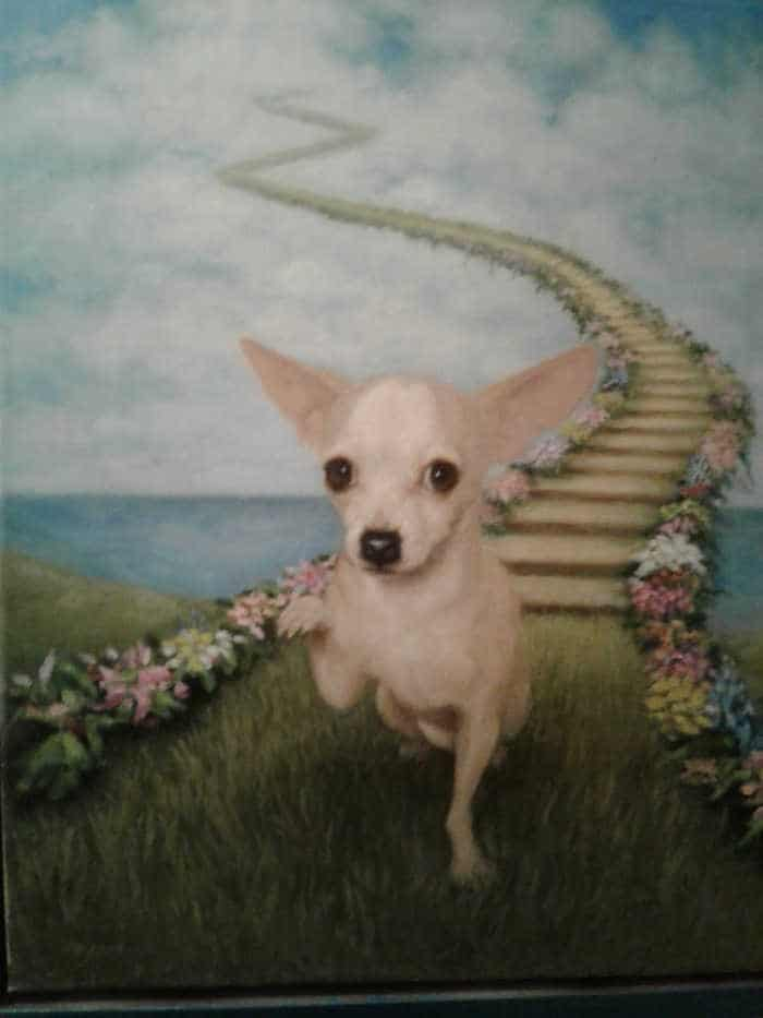 painting of chihuahua at bridge