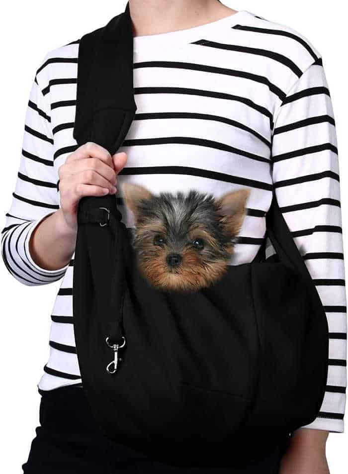 a yorkie dog in a pet sling
