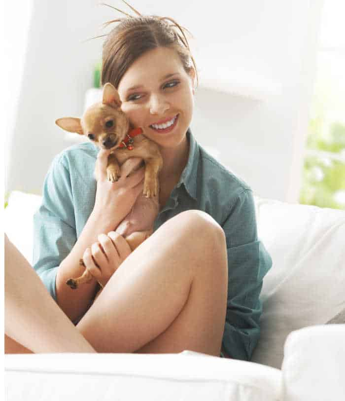 young woman huffing fawn chihuahua puppy