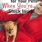 woman in red robe holding a fawn chihuahua on couch