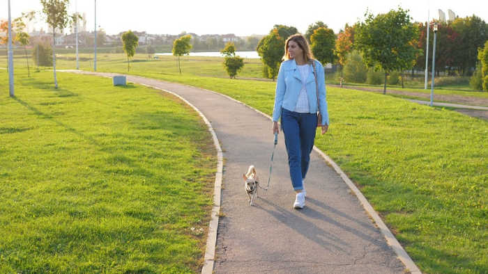 lady walking a dog in park