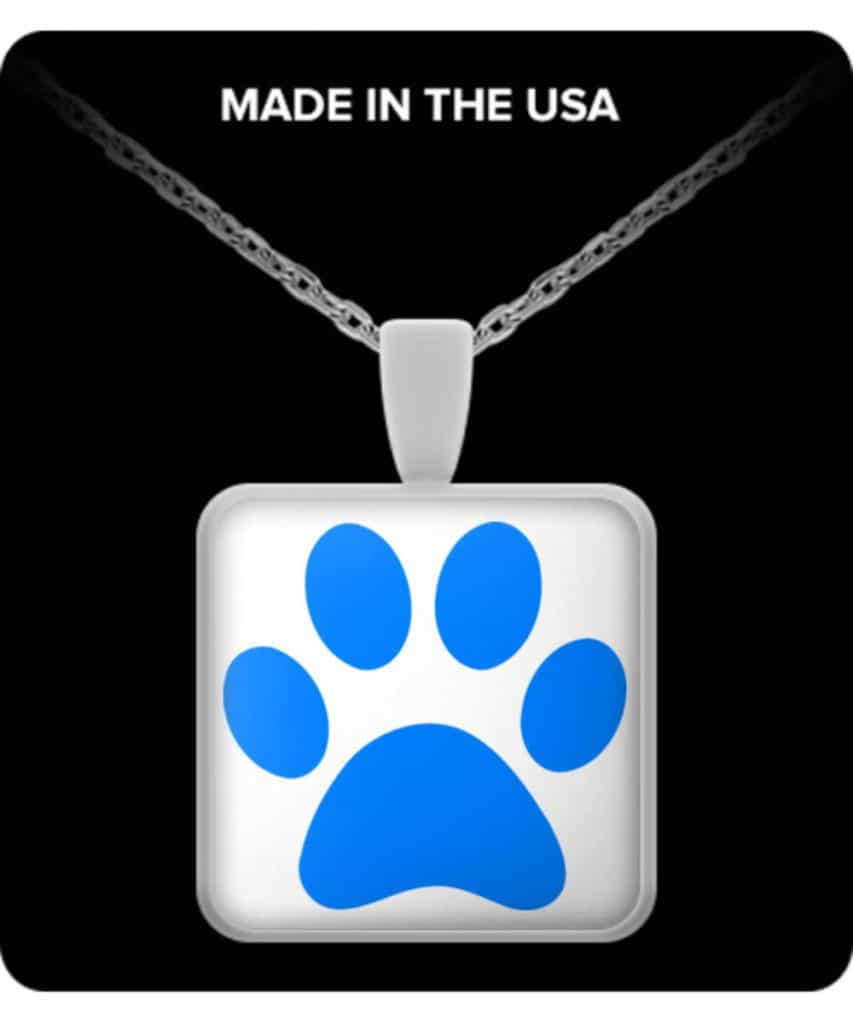 Blue Paw Square Necklace